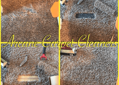 Carpet Cleaners - 5